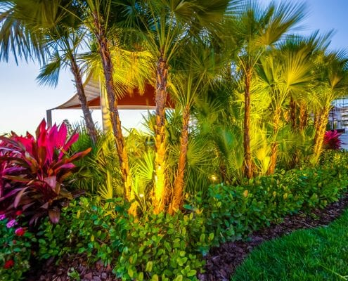 Residential Lighting - Landscape LED Lighting Installation for Orlando, Florida by BLG Environmental Services