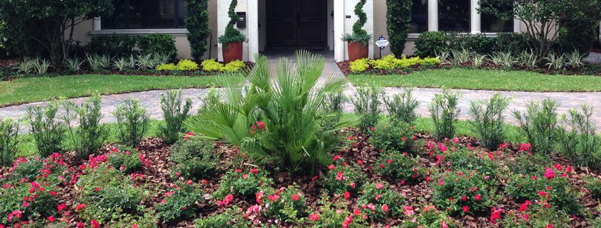 For A Residential Landscape Designer in Orlando, Florida Call BLG Environmental Services