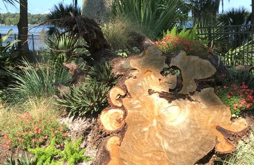 Hardscape Design in Orlando, Florida by BLG Environmental Services