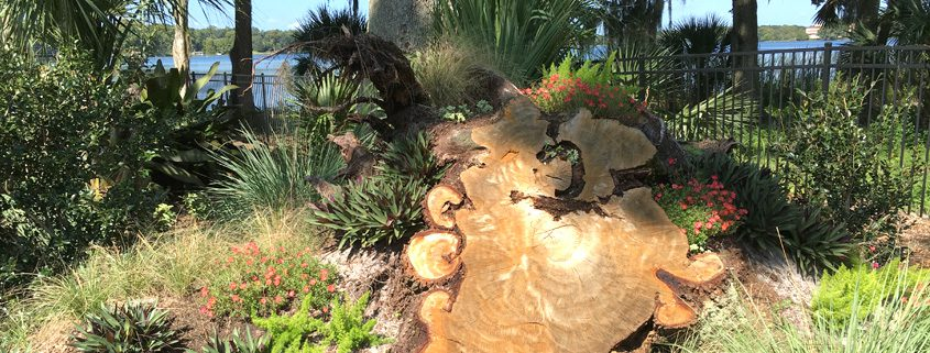 Winter Park Florida Landscape Design And Hardscape Design Ideas