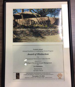 Award Winner - Award of Distinction