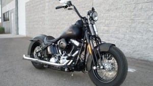MRI Softail: Lee's Softail Cross Bones
