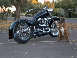 MRI Softail: Miguel's 1993 Fat Boy FLSTF