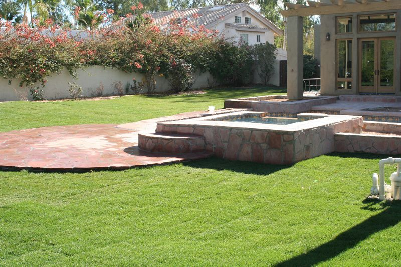 Phoenix Sod and Plant Installation from Southwest Lawn Sprinkling Specialists