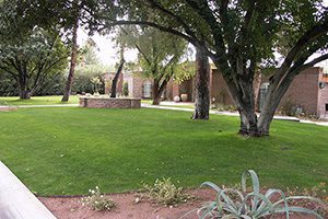 Sprinkler System Maintenance available at Southwest Lawn Sprinkling Specialists in Phoenix, Arizona